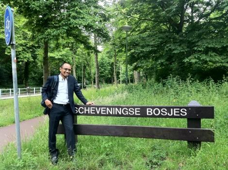 Hutan Scheveningse yang berada di kota Den Haag